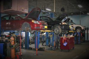 Cars on lifts being worked on